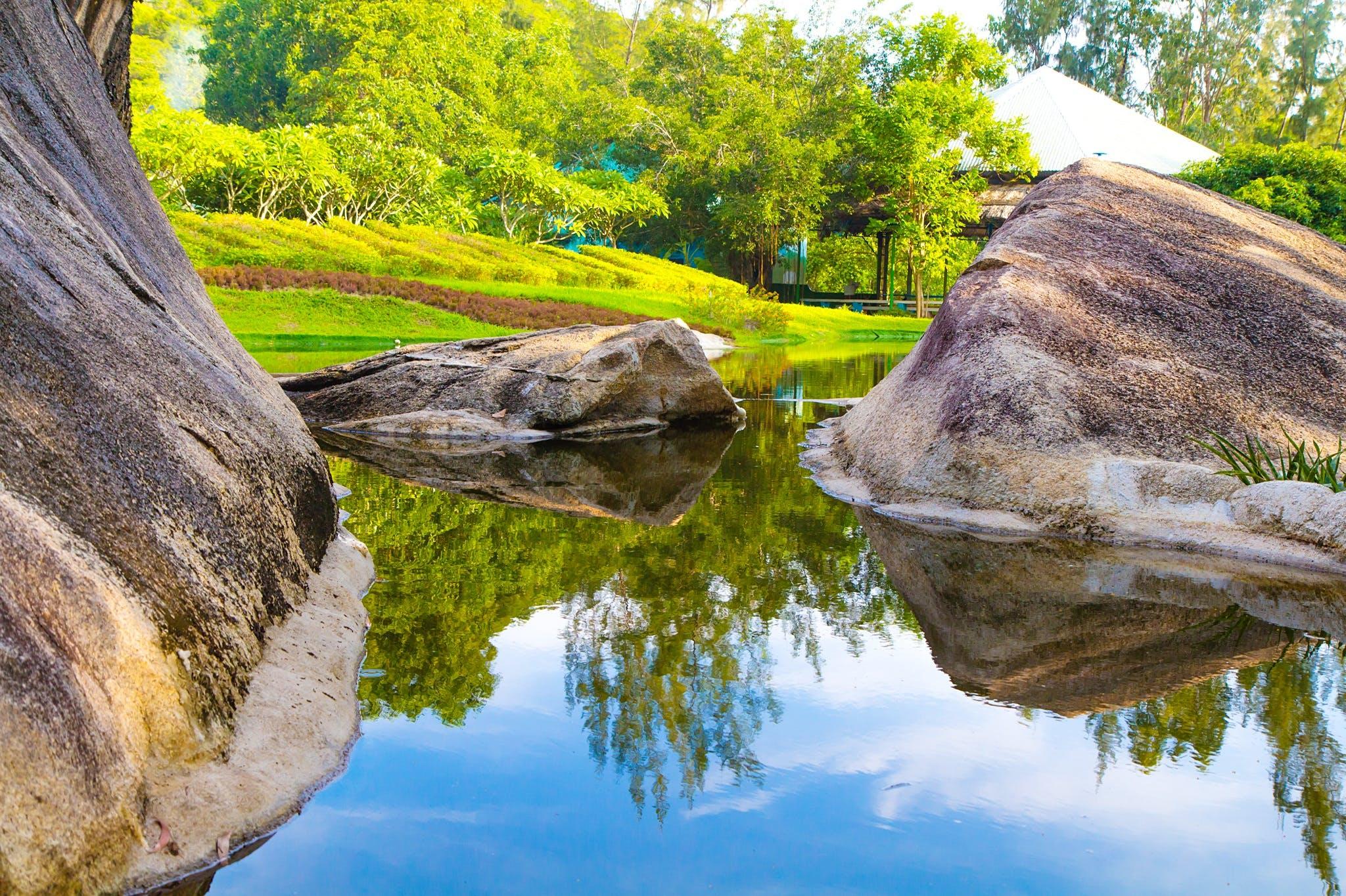 パーク, 反射, 夏, 岩の無料の写真素材
