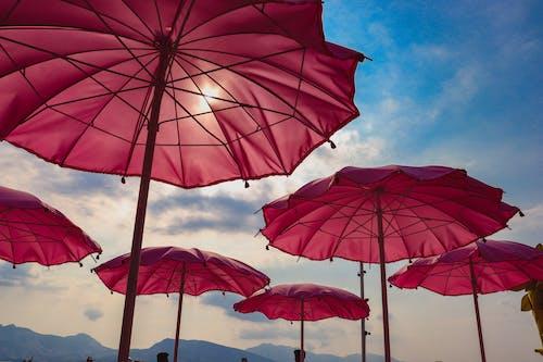 Fotobanka sbezplatnými fotkami na tému dáždniky, modrá obloha, ružová, slnečný deň