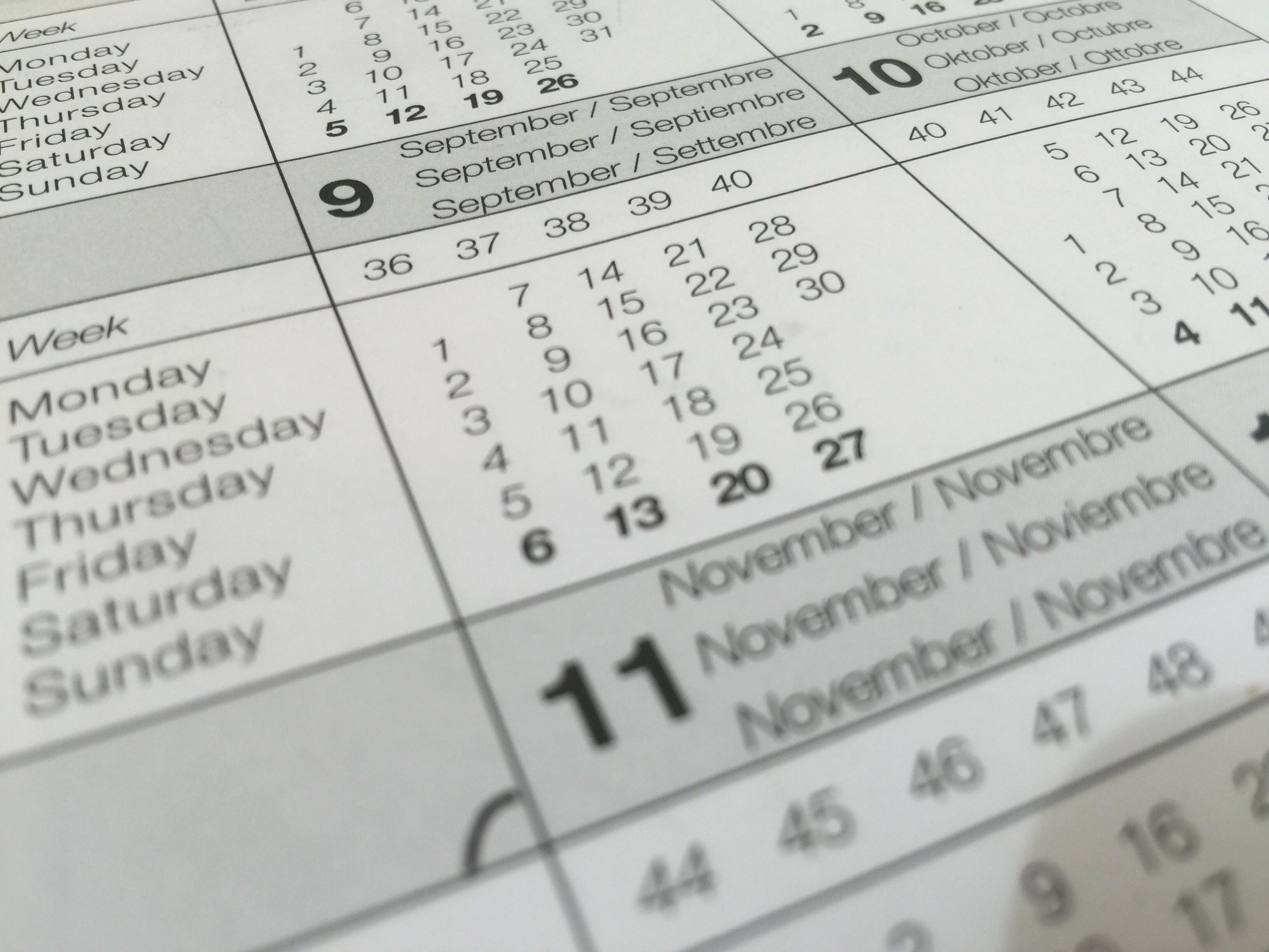 Základová fotografie zdarma na téma datle, kalendář, program