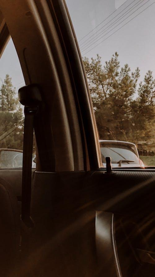 Gratis stockfoto met auto, gezellig, gouden zon, straat