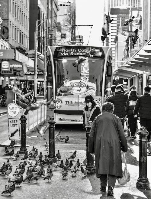 트램 정류장에있는 사람들의 무료 스톡 사진