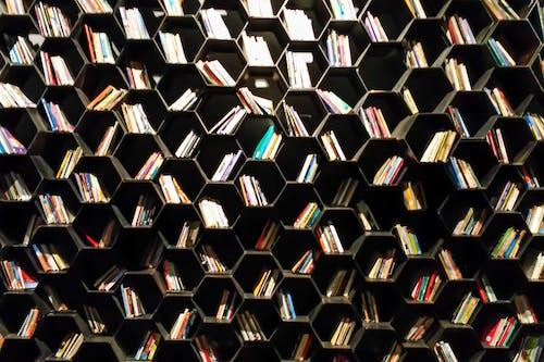 內部, 圖書, 圖書館, 圖案 的 免費圖庫相片