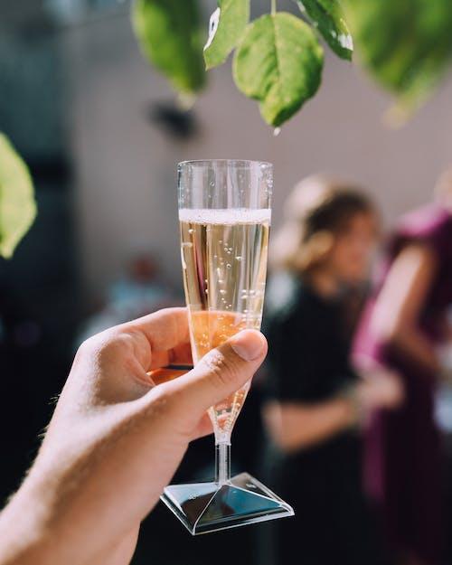 Kostnadsfri bild av champagne, dryck, håller, hand
