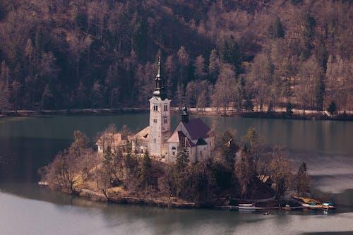 Imagine de stoc gratuită din apă, arbori, arhitectură, biserică