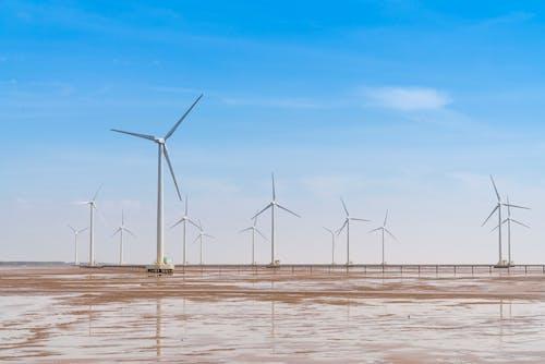 Photo of White Windmills