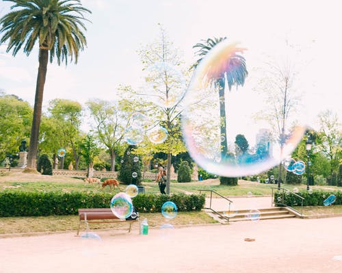 Bubbles Floating during Daytime