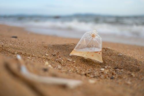 deniz, kamış, kum, naylon poşet içeren Ücretsiz stok fotoğraf