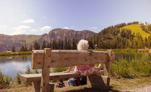 Бесплатное стоковое фото с lonley, Австрия, озеро, ретроспекция