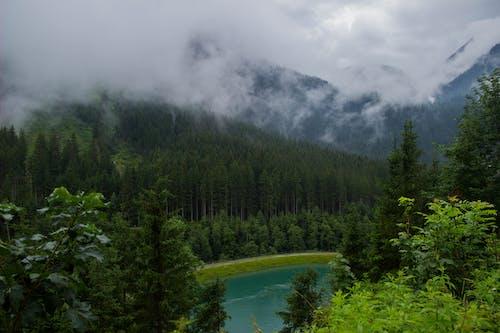 Бесплатное стоковое фото с Австрия, озеро