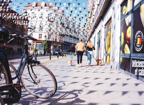 Fotobanka sbezplatnými fotkami na tému chillout, fotografia ulice, leto, mestský