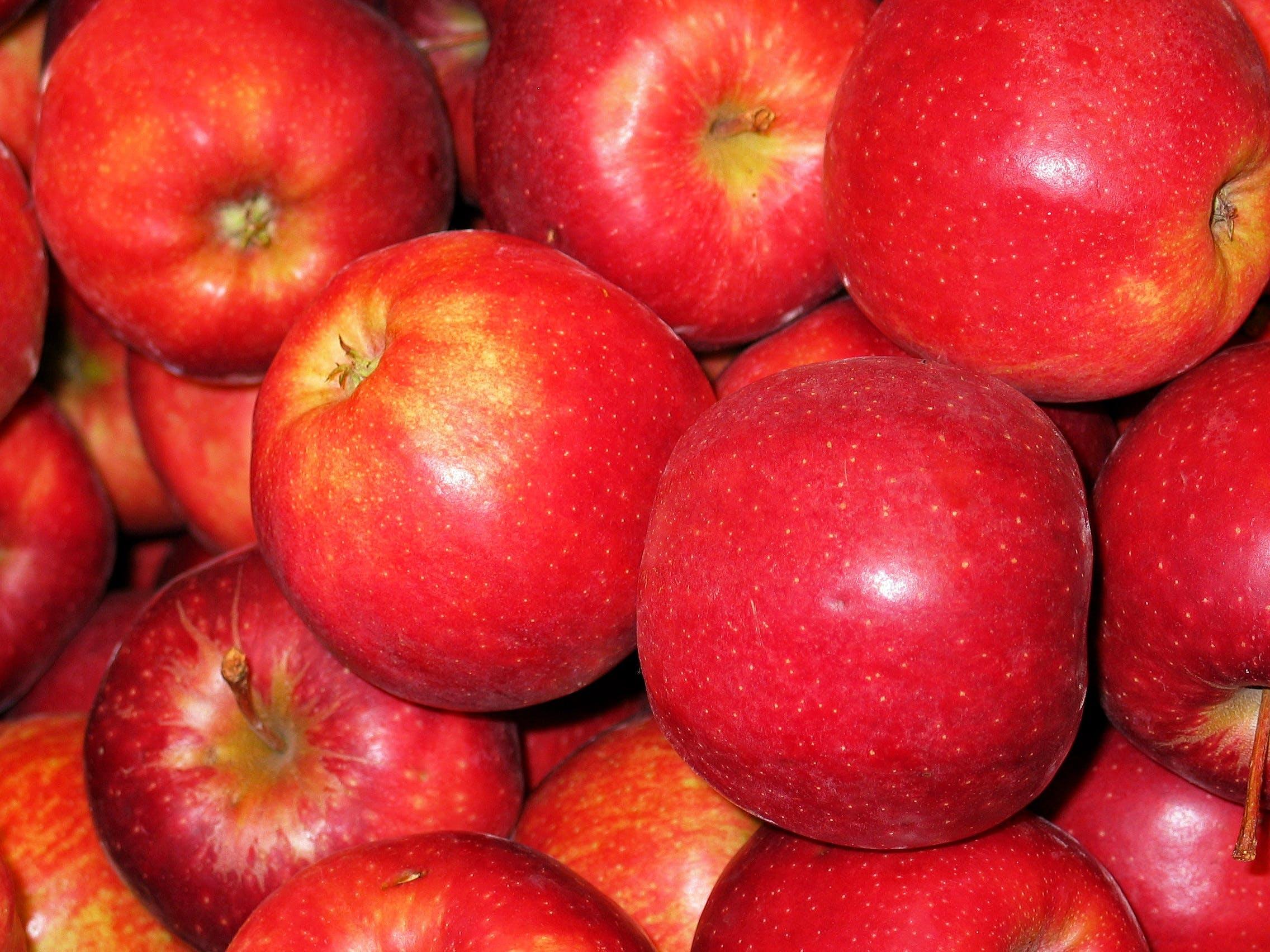 Free stock photo of healthy, apple, kitchen, eat