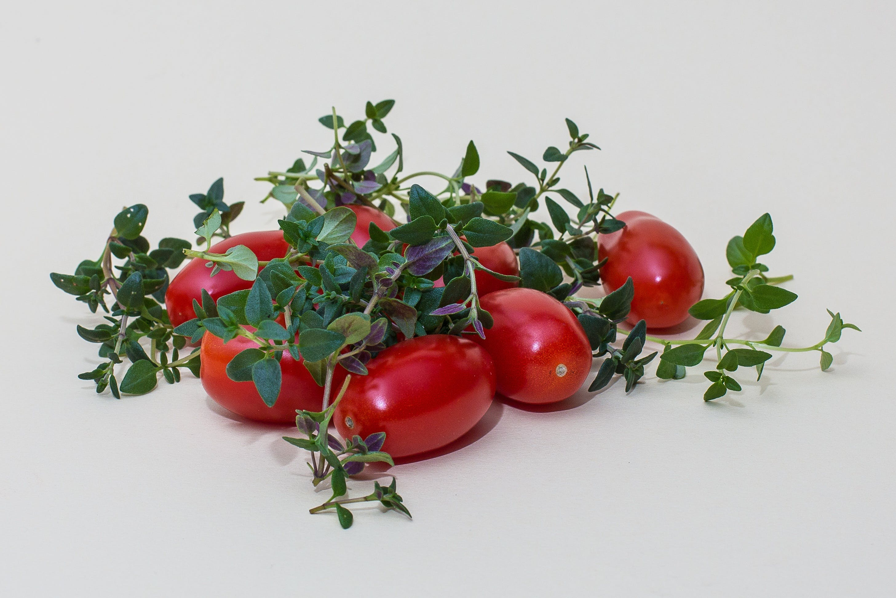 Free stock photo of tomatoes, herbs, cook, herb