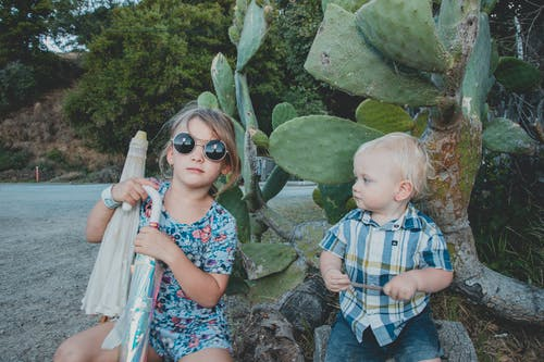 Children Sitting Near A Cactus Plant