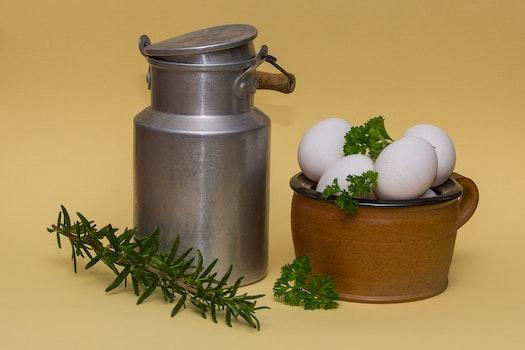 Free stock photo of food, egg, kitchen, eat