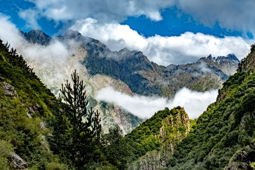 Free stock photo of cloud forest, clouds, forest, mountain