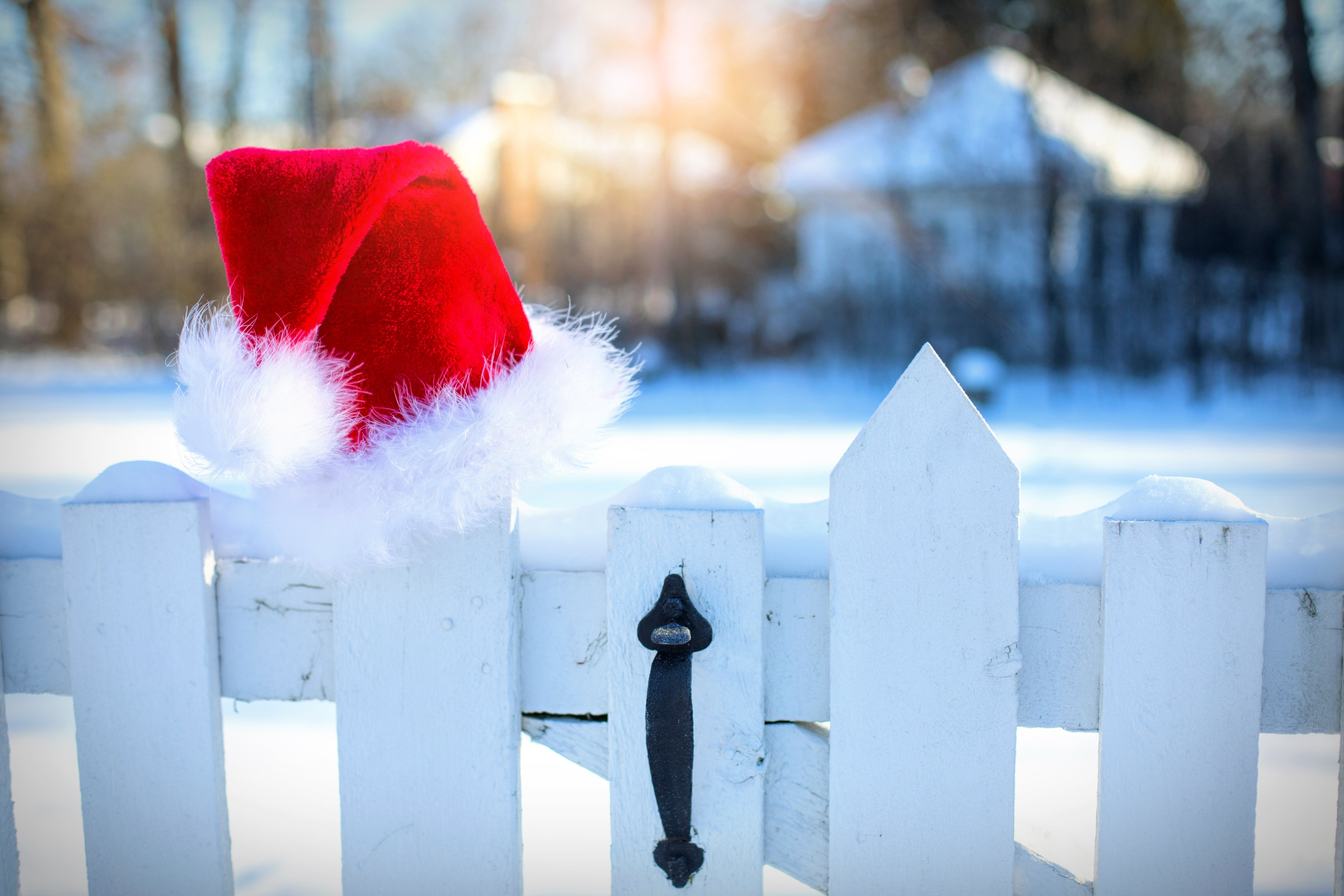 Free stock photo of snow, holiday, winter, hat