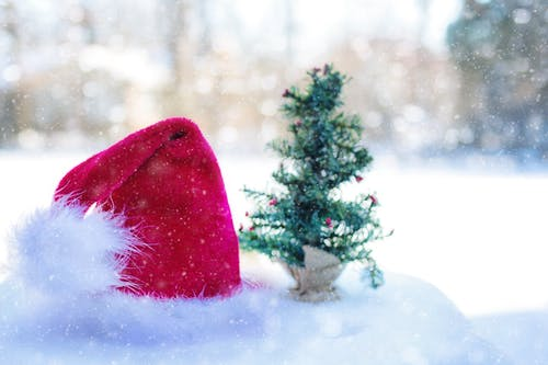 Santa Claus Hat Beside Pine Tree Miniature