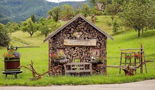 Gratis stockfoto met architectuur, bloemen, boerderij, bomen