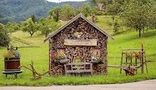wood, landscape, vacation