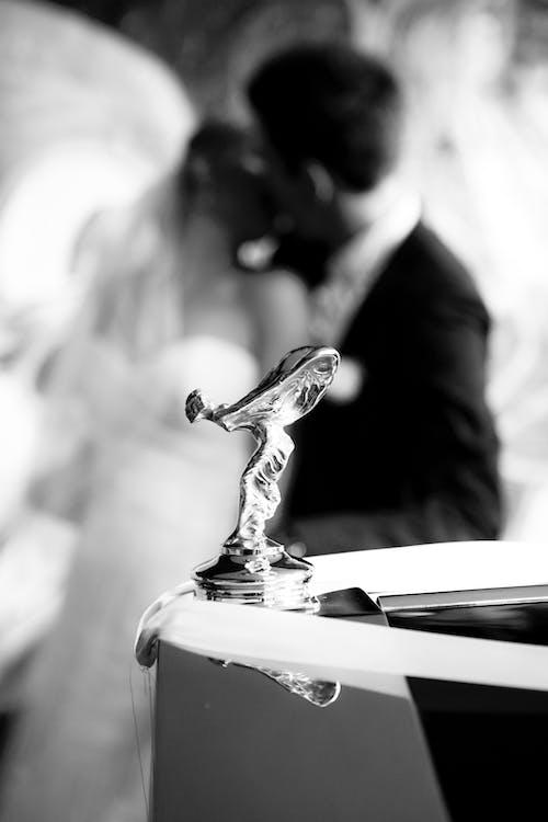bridal dress, bride, Bride and Groom
