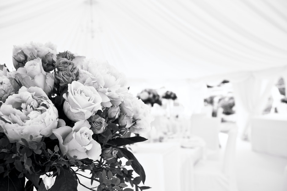 beautiful flowers, black and white, blur