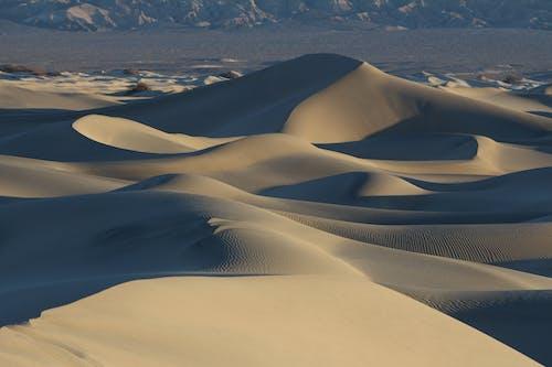 Ilmainen kuvapankkikuva tunnisteilla aamu, aavikko, dyyni, hiekka