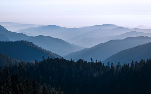Δωρεάν στοκ φωτογραφιών με αειθαλής, αυγή, αχλή, βουνά