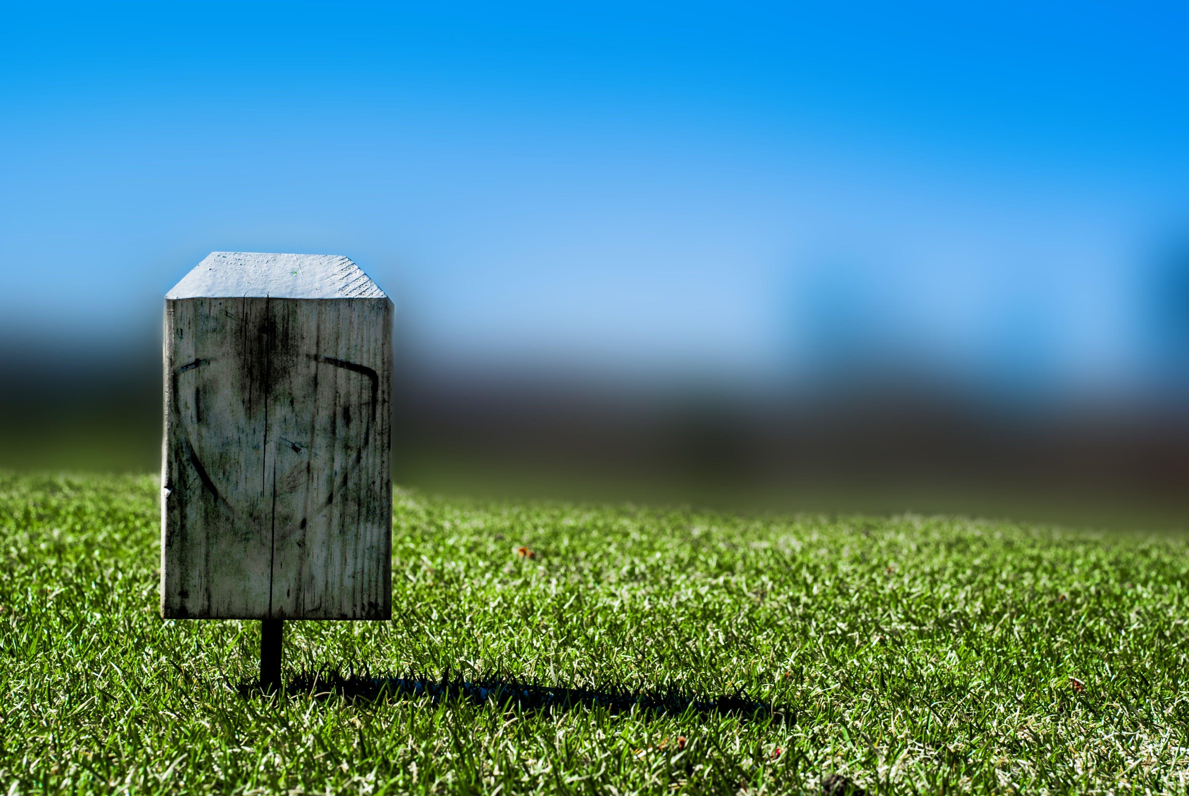 Free stock photo of grass, club, lifestyle, golf