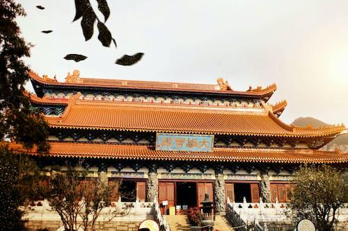 Základová fotografie zdarma na téma architektura, buddhismus, buddhisté, buddhistický chrám