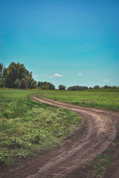 Безкоштовне стокове фото на тему «дорога, зелень, небо, Природа»