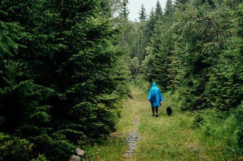 Gratis lagerfoto af aktiv, autentisk, bjerge, dårligt vejr
