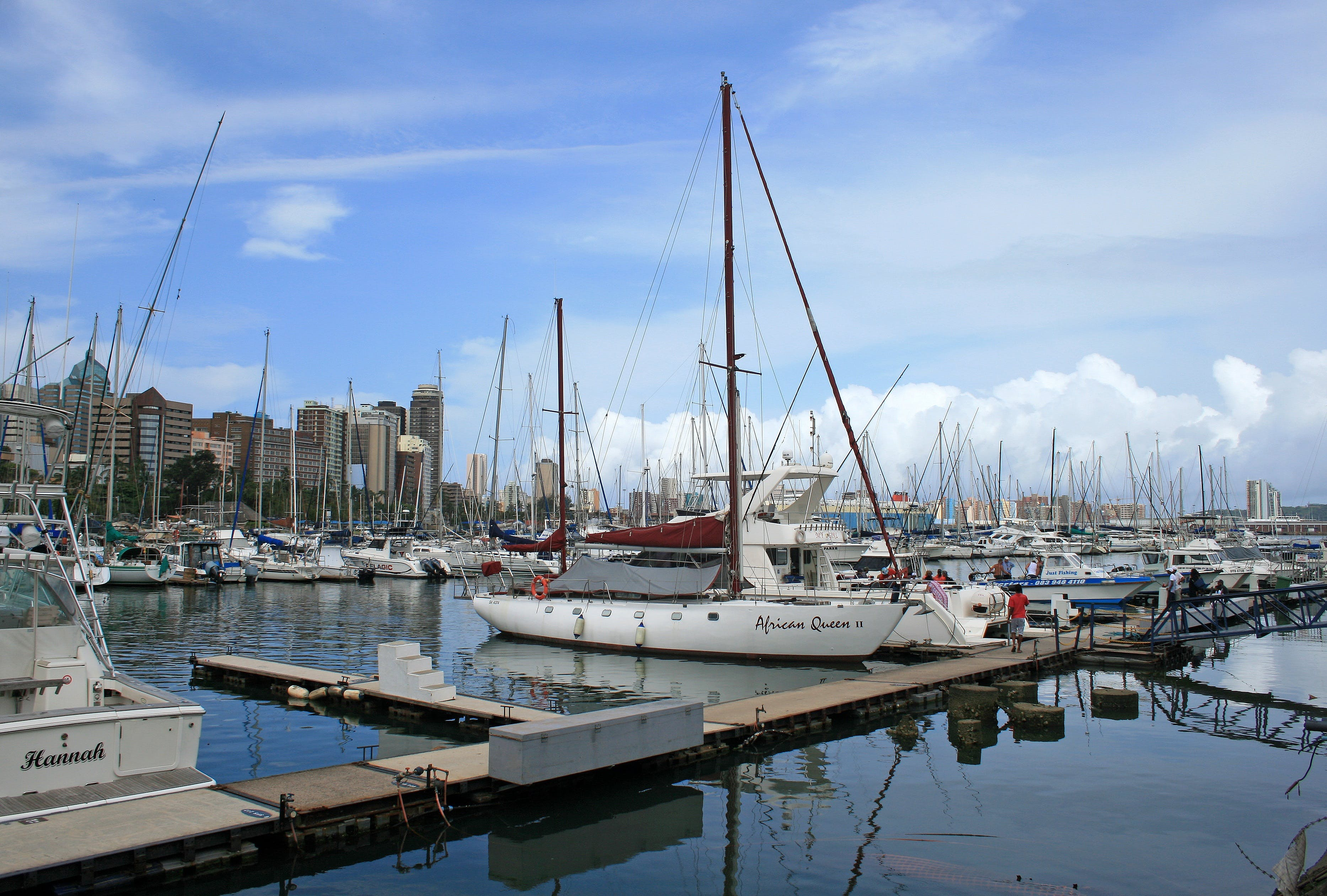 Free stock photo of jetty, water, yachts, harbour