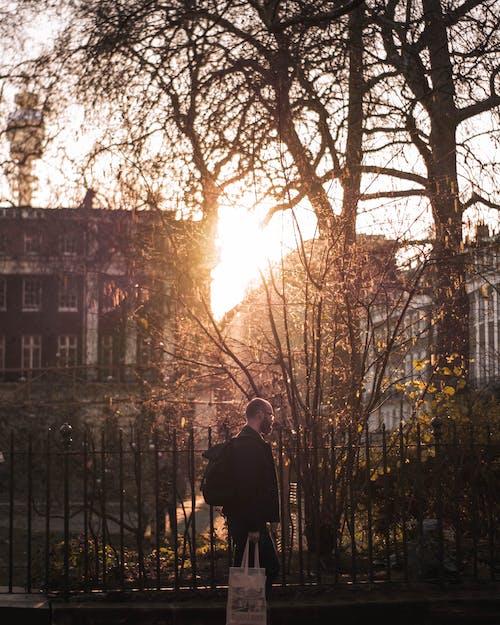 イングランド, クリエイティブ写真, ソニー, ロンドンの無料の写真素材