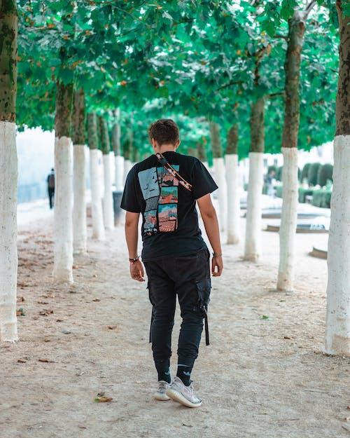 Δωρεάν στοκ φωτογραφιών με streetwear, άνδρας, δέντρα, πίσω