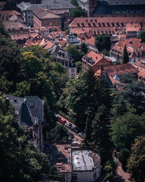 シティ, シティービュー, ドイツ, ハイデルベルクの無料の写真素材
