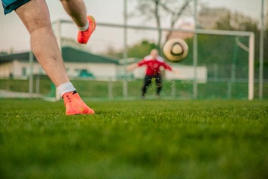 Kostenloses Stock Foto zu schuhe, sport, ball, grün