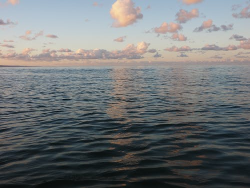 努萨, 地平線, 天空 的 免费素材图片