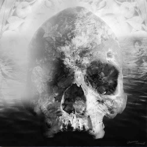 哥德式, 恶梦, 死亡 的 免费素材图片