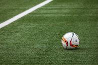 field, grass, sport