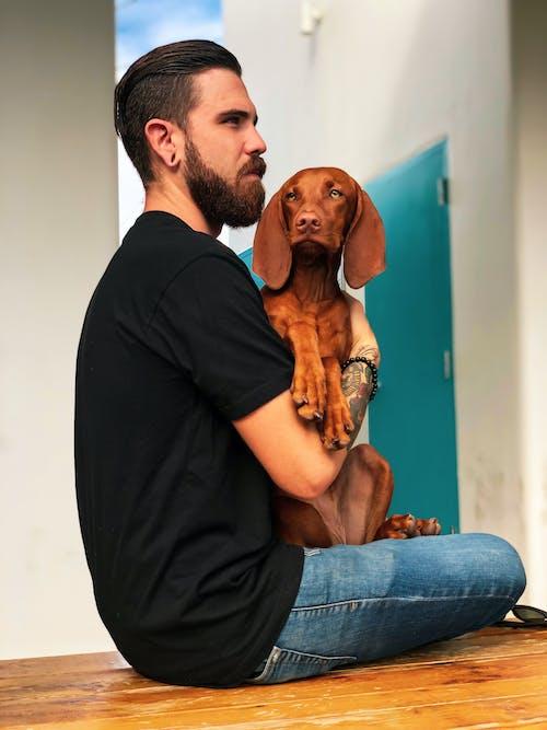 개, 개의, 나르는, 남성의 무료 스톡 사진