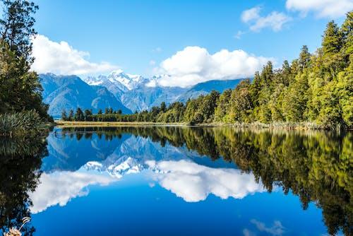 Photos gratuites de arbres, calme, ciel, eau