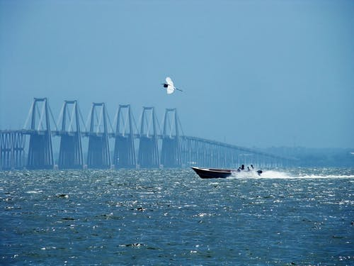 Free stock photo of boat, bridge, heron, lake