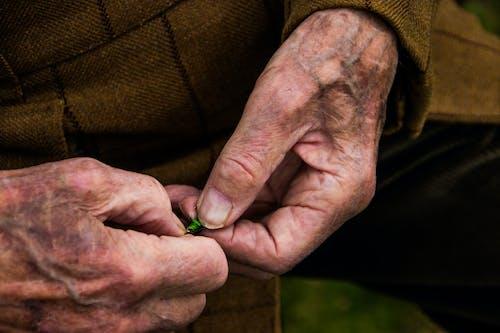 Free stock photo of elderly man, experience, fishing, fly