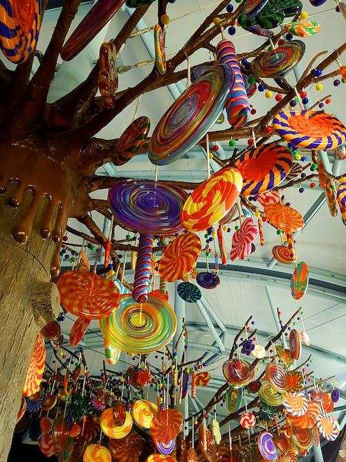 Imagine de stoc gratuită din acadele, arbore, artă colorată, colorat