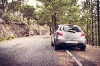road, trees, car