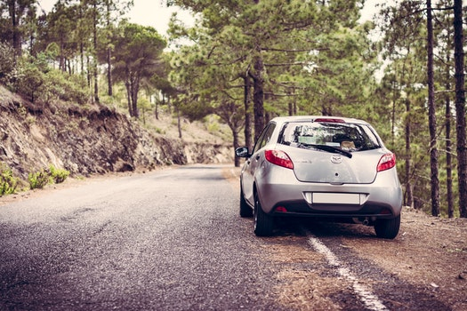 Free stock photo of road, trees, car, vehicle