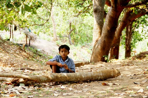 Free stock photo of Andhra Pradesh, boy, boy sitting in nature, indian