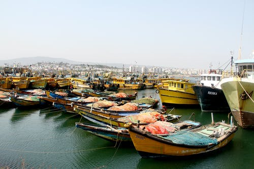 Free stock photo of anchor, bay of bengal, boats, fishing
