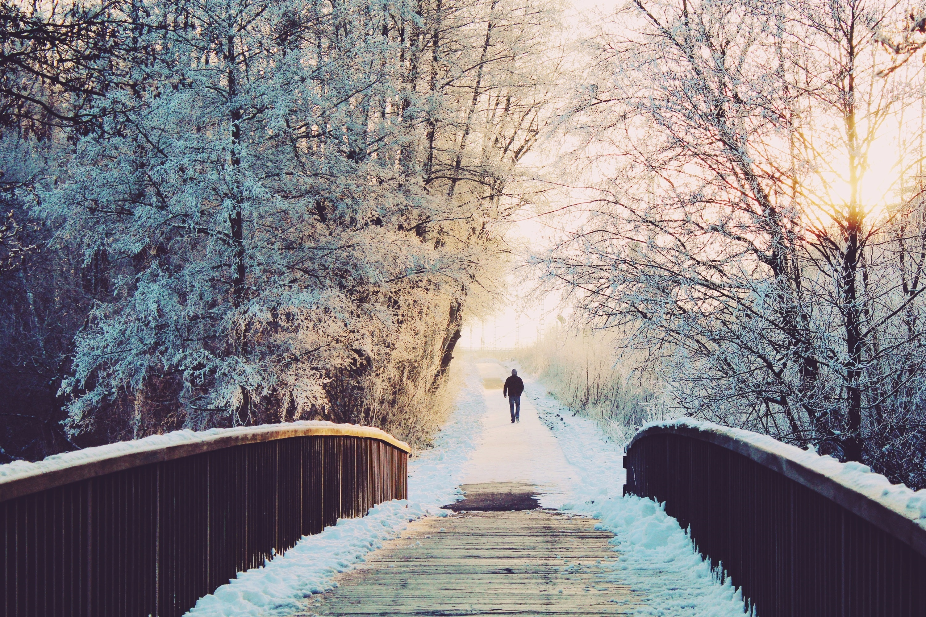 Man Walking Beyond Bridge · Free Stock Photo