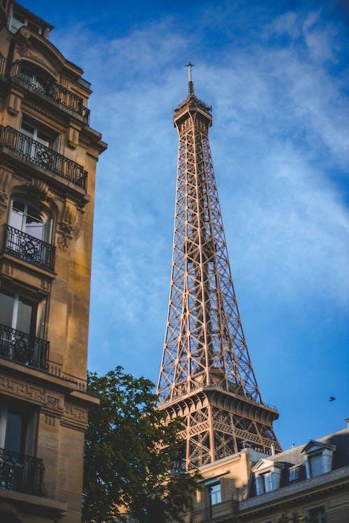구조, 도시, 도시의, 에펠의 무료 스톡 사진
